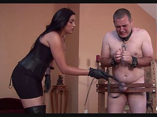 MISTRESS punish slave