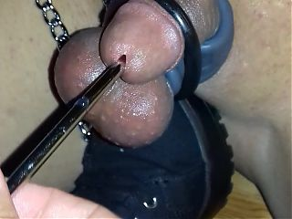bound sissy clitty sounding